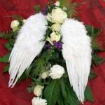 gärtnerei pfitzner - floristik für hochzeiten, geburtstage, firmenjubiläen und jede andere gelegenheit
